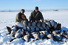 Michael Honey and Delta Waterfowl Board Member Don Morrison Limit out on Geese